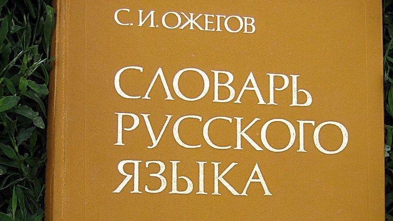 В Херсонской области русский язык лишился регионального статуса