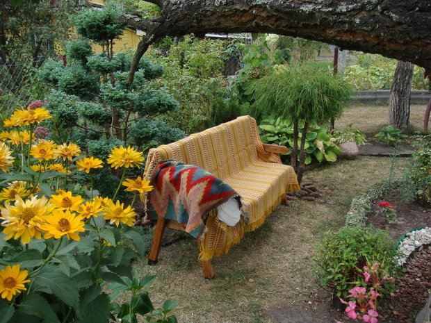 Дача: потрясающий участок 90-летней хозяйки