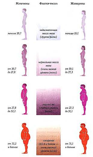 Соответствует ли ваш вес вашему росту?
