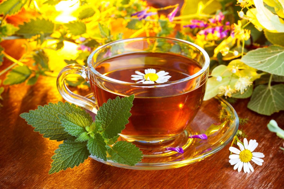 Сердечный чай по монастырскому рецепту купить москва
