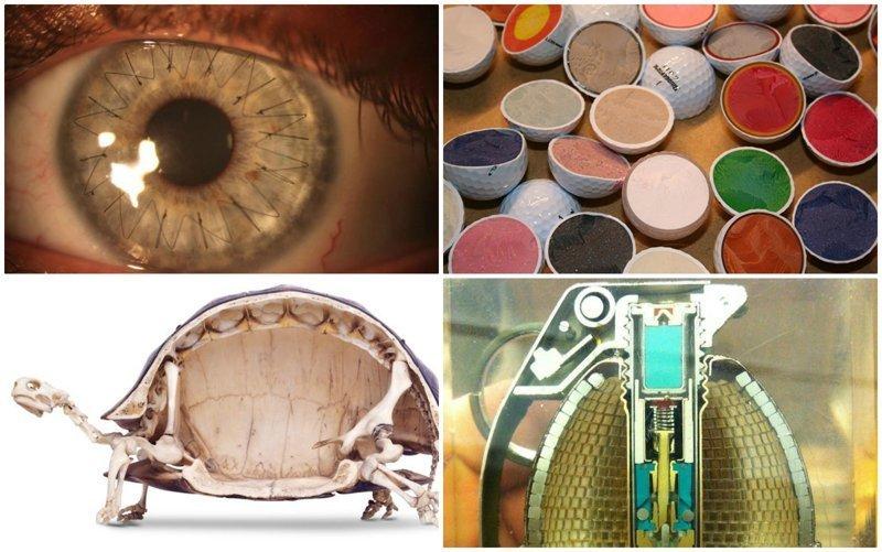 40 занимательных фото, показывающих скрытую сторону вещей