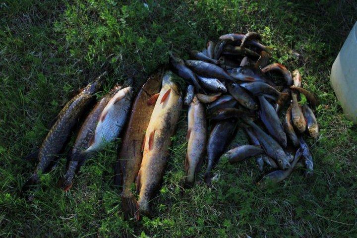 Куда поехать рыбалка в карелии