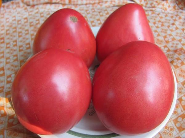 Выращивайте и ешьте томаты на здоровье!