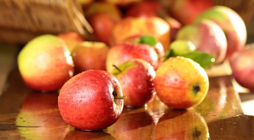 Какие яблоки самые лучшие?