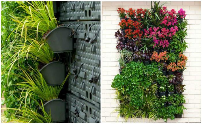Вертикальные сады для квартиры своими руками