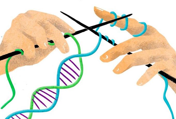 Факты из мира генетики: идиотизм не передаётся от отца к сыну
