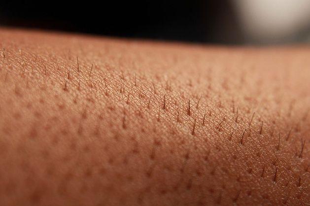 В Китае создали очередную замену коже