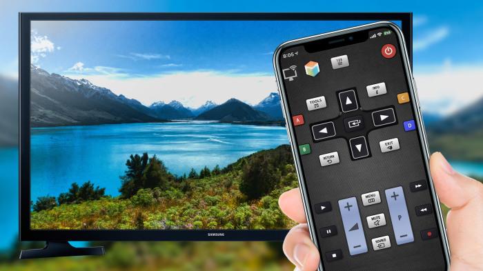В пультах к новым моделям телевизоров предусмотрены цветные кнопки с возможностью самостоятельного программирования функций / Фото: baseread.com