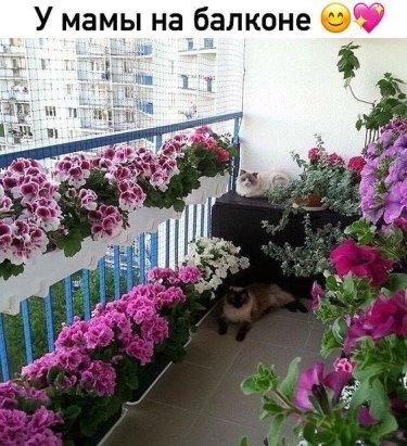 Как Вам такой балкончик? По моему просто великолепно!