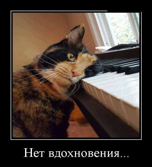 Лучшие шутки - из народа)