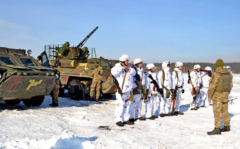 Полномасштабное наступление ВСУ может поставить точку в вопросе Донбасса