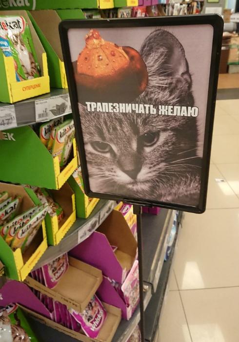 Барин голоден. | Фото: howmade.ru.