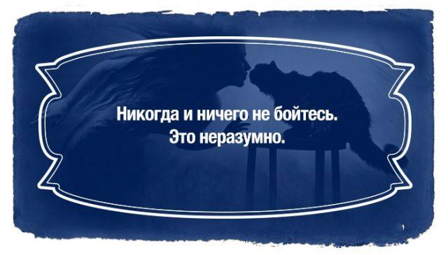 "Булгаков, фразы, в картинках...""Мастер и Маргарита"""