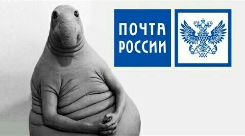 Почта России может поднять цены на отправку писем и бандеролей