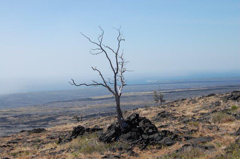 Лавовые пустыни вокруг америка, вулканы, гавайи, пейзажи, природа, путешествия