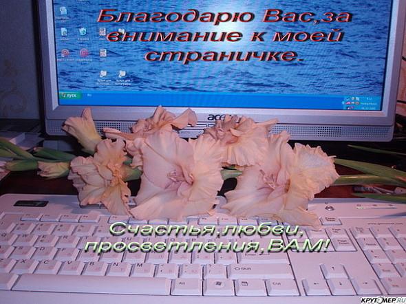 Героев, виртуальные открытки в блогах