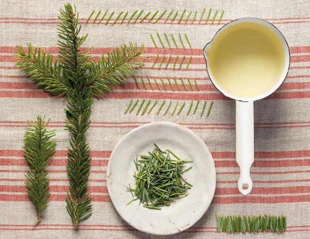 Чудо рецепты из хвои для здоровья и красоты