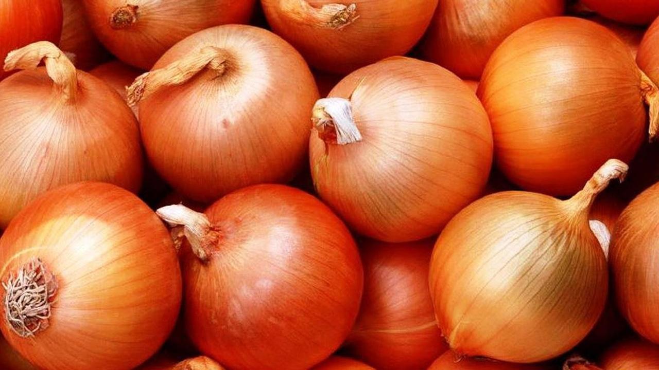 Что росло в русском огороде до картошки? огород