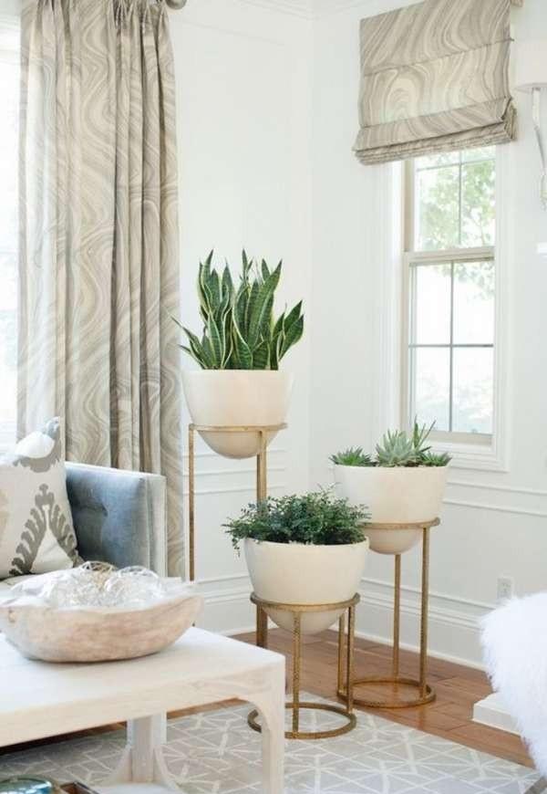 интересная подставка для растений