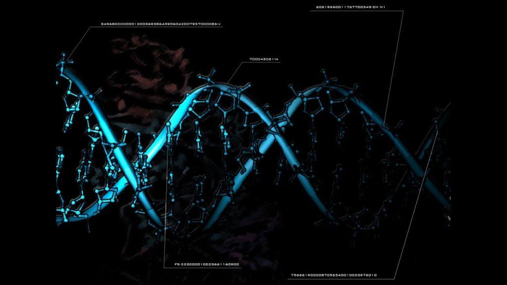 Почему ДНК человека может быть продуктом чужого разума