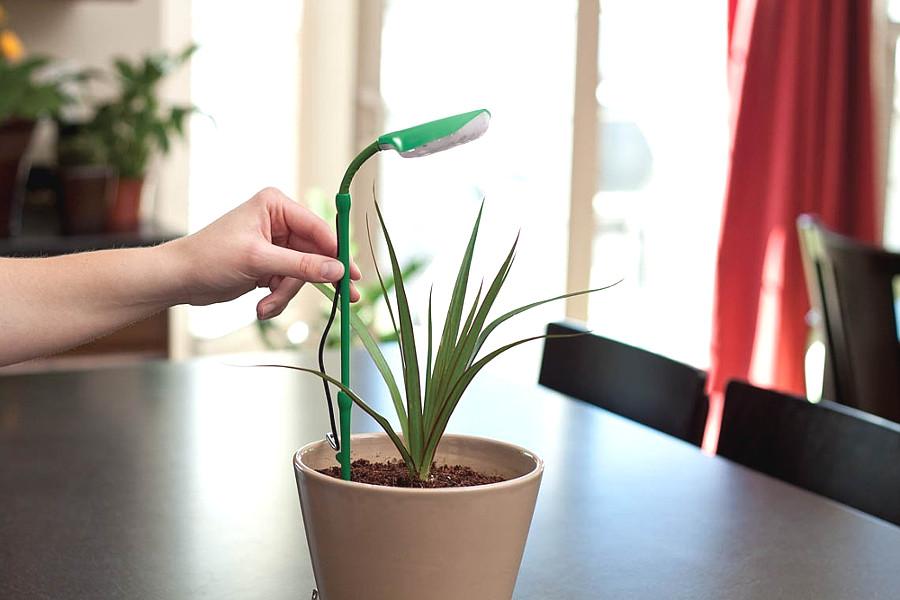 Полезные гаджеты для растений