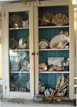 Поделки из ракушек декор,домашний очаг,интерьер,ракушки,своими руками,сделай сам