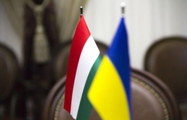 «Мы не в такой Украине мечтали жить»: Закарпатье требует независимости