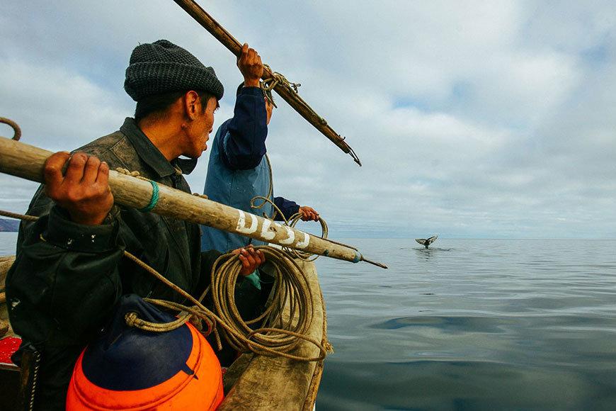 """Охота на китов. """"Китобои"""""""