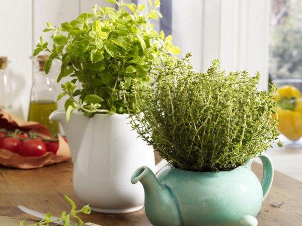 Весенний зелёный огородик на подоконнике