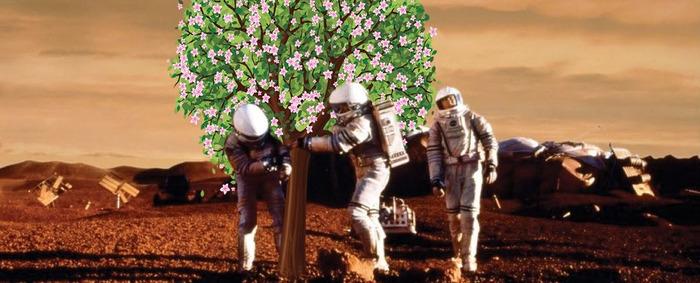 Будут ли на Марсе яблони цвести?
