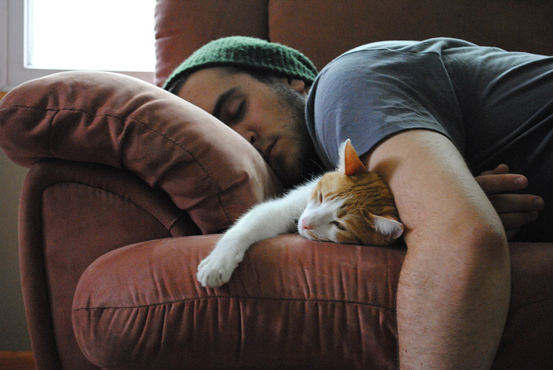 Картинки по запросу мужчина и кот