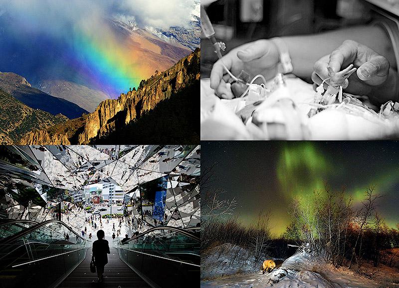 Фотоконкурс National Geographic Photo Contest 2013