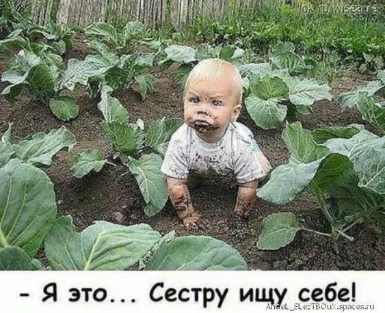 Русский язык очень краткий и…