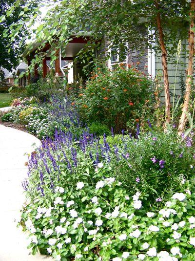Классический Сад Cottage Gardens