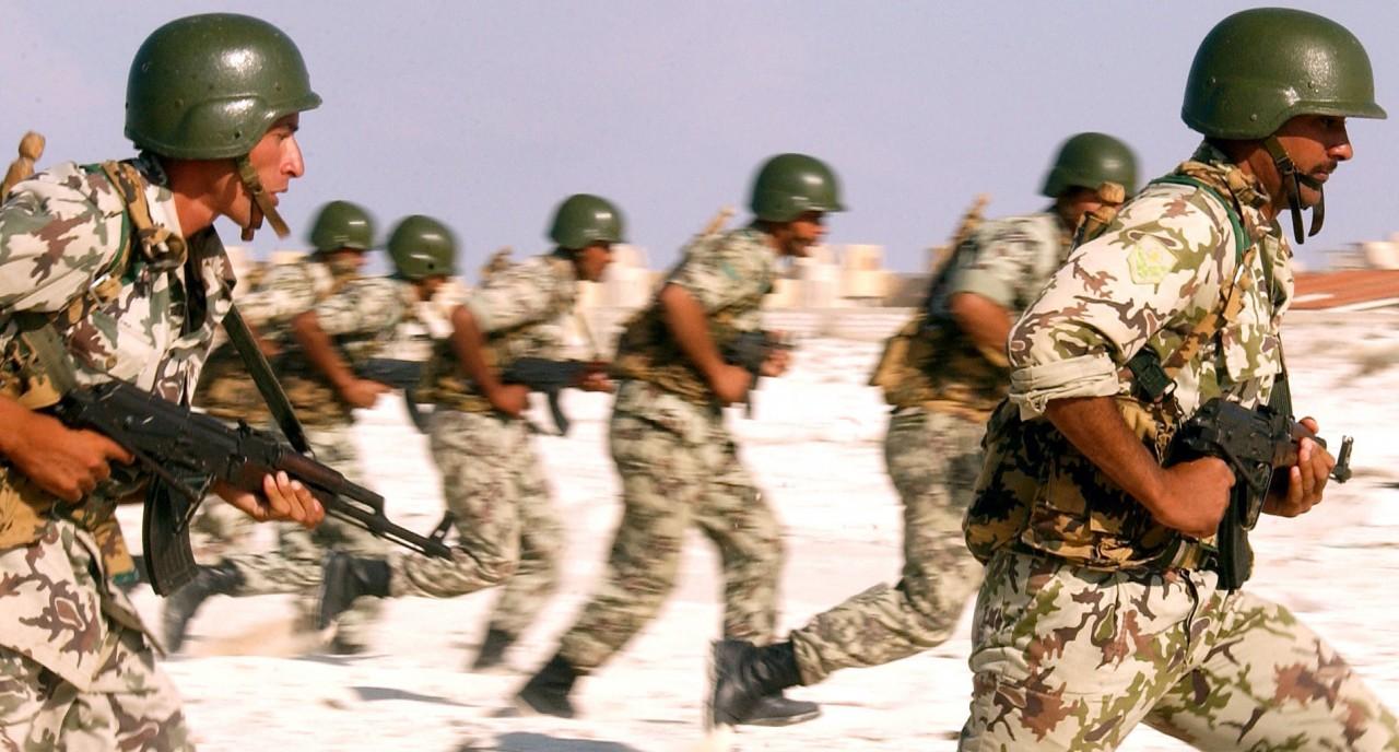 ОАЭ поддержали египетские силы в Эритрее