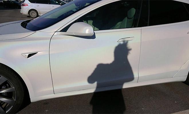 Датчики автомобиля Tesla показали невидимого человека на кладбище: видео