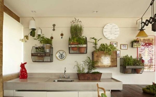 пример оформления растениями кухни