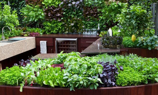 Современный Сад by Aralia: Innovation in Landscape Design