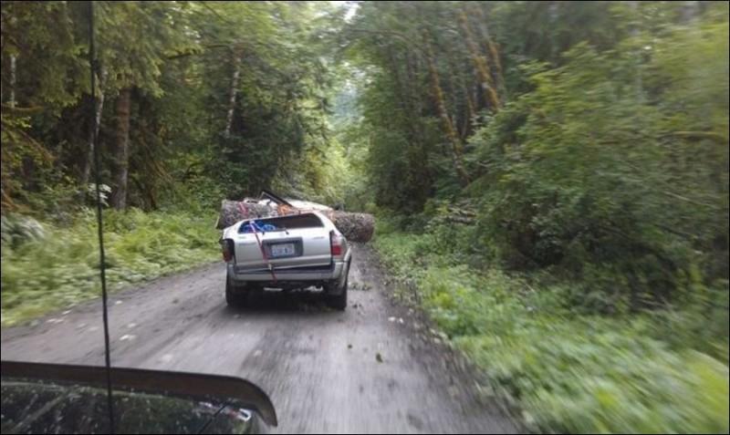 У американцев свой способ ездить за дровами дтп
