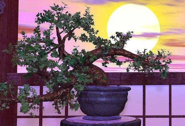 Горшечные растения, обладающ…