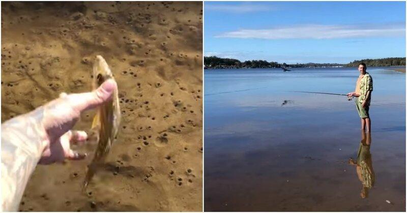 Отпустивший рыбу австралиец не ожидал такого развития событий