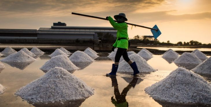 Ученые развеяли главные мифы о вреде соли для человека