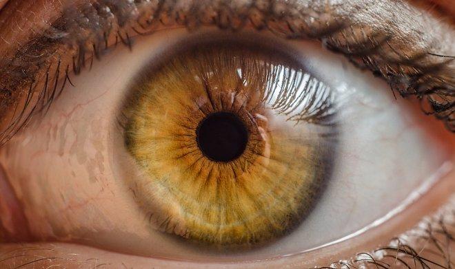 Глазной имплант с магнитом поможет победить глаукому