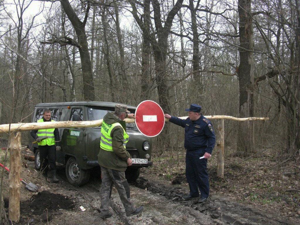 Штраф за въезд на автомобиле в лес в 2021 году