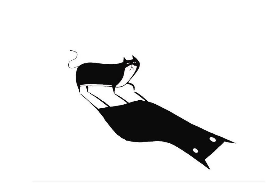 Черно-белые коты Эндрю Хитчена