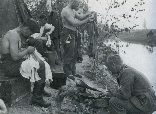 Вши на Второй мировой войне: как они стали проблемой для воюющих сторон