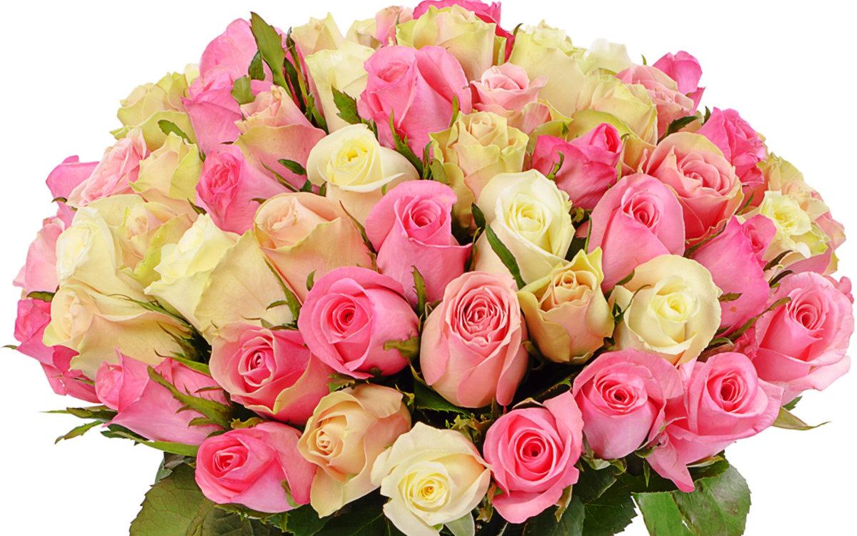 Открытка с розовыми розами с днем рождения, открытки