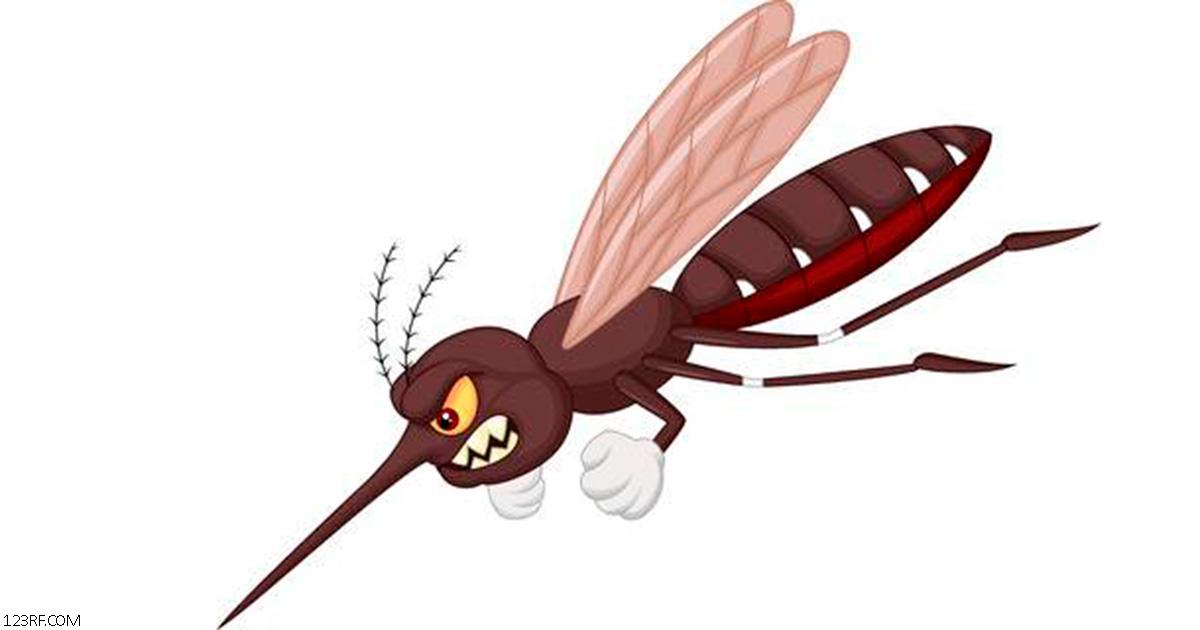 Вот 20-Ñекундный трюк, чтобы избавитьÑÑ Ð¾Ñ' зуда поÑле укуÑа комара