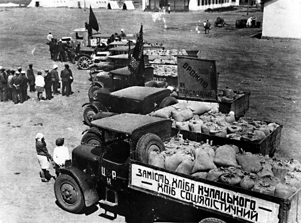 Голод в СССР в 30-е годы был организован США