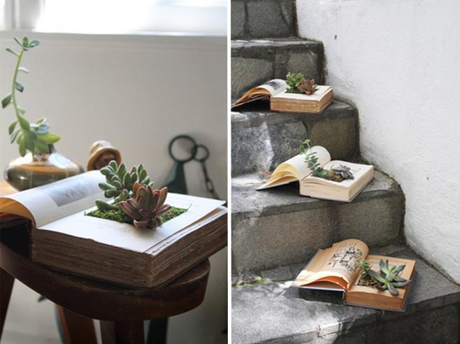 Комнатные растения в книге